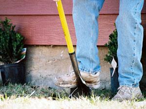 園芸を通じて、心身の回復をはかる園芸療法