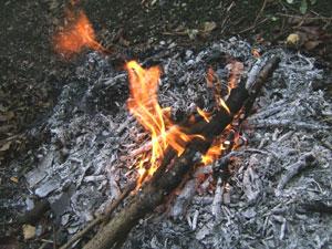 草木を燃やしてできる灰