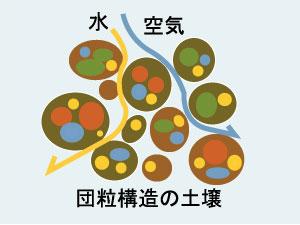 団粒構造の土壌