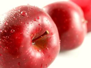 リンゴの果実は、エチレンガスを発する