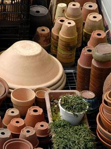 様々な形状・材質が選べる鉢